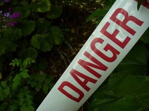 danger_cynicalview