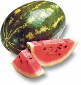 watermelon_purple-slog
