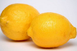 lemons_rob-dani